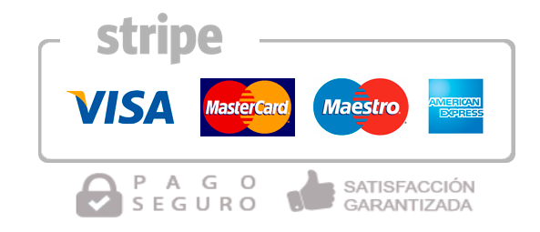 pago seguro web